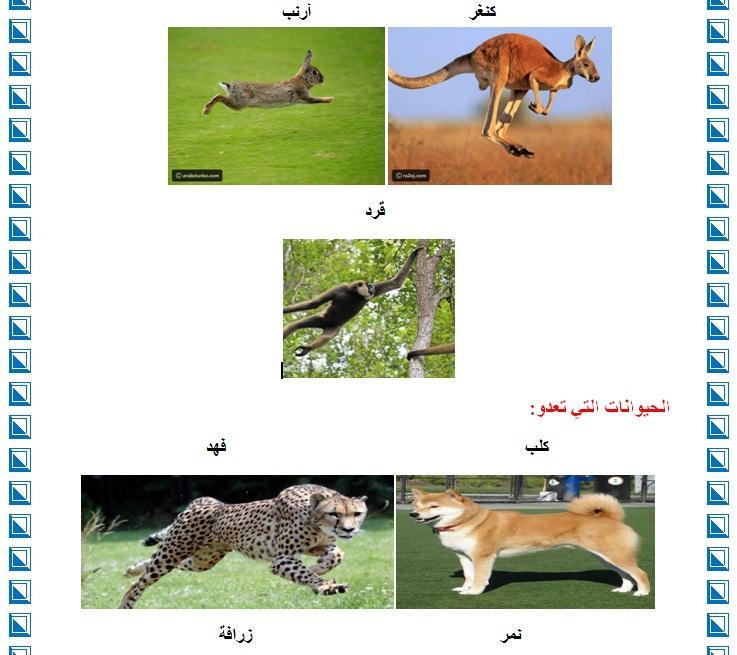 التنقل عند الحيوانات