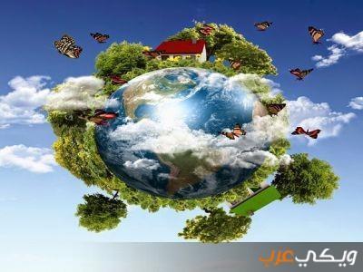 المكونات الحية ـ البيئة ـ عناصر البيئة ـ الصخور ـ  تفتت الصخور ـ البركة