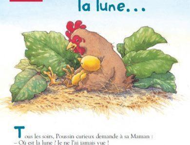 قصص جميلة و قصيرة بالفرنسية ـ أجمل القصص