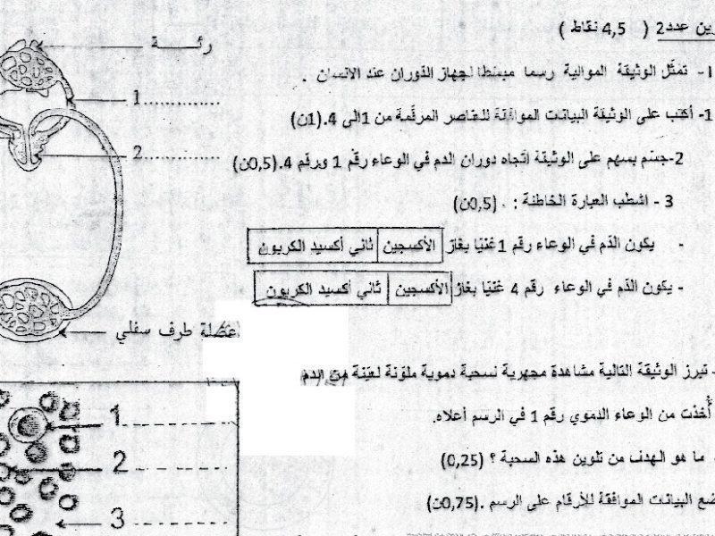 فرض تأليفي عدد 2 في علوم الحياة و الأرض 9 أساسي ـ 2
