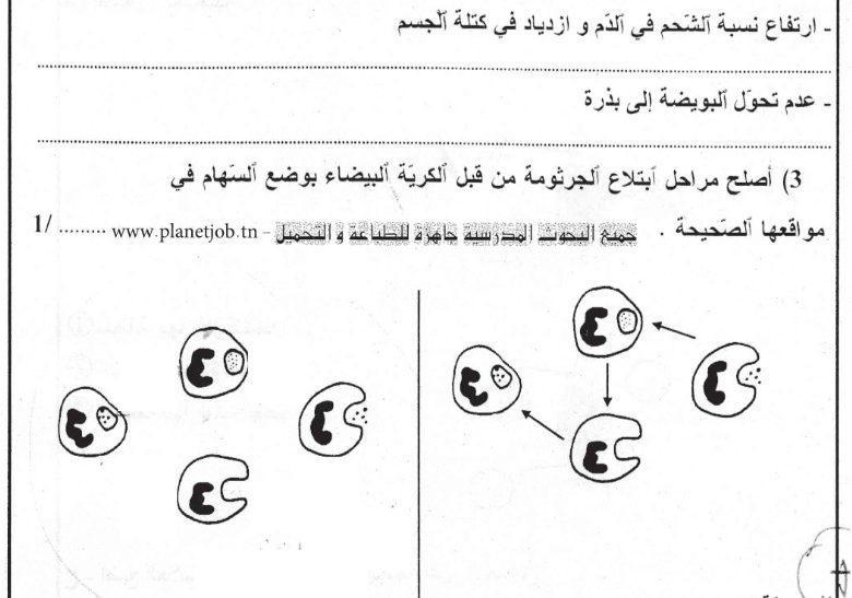 إمتحان تجريبي في الإيقاظ العلمي قبل مناظرة النموذجي سنة 6 + الإصلاح