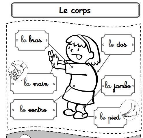 الكتاب المساعد في تعلّم الأشياء من حولك  ـ كتاب رائع في مادة الفرنسية سنة ثالثة