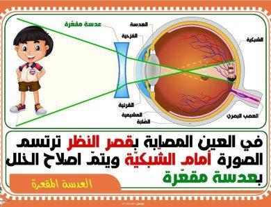 تلخيص الإيقاظ العلمي : الدورة الدموية الكبرى ـ الدورة الدموية الصغرى-الجهاز التنفسي ـ مكونات الدم ـ أغذية الطاقة ـ أغذية النمو ـ الهواء