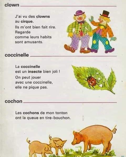 أفضل كتاب لغوي لتعليم المفردات باللغة الفرنسية سنوات الإبتدائي