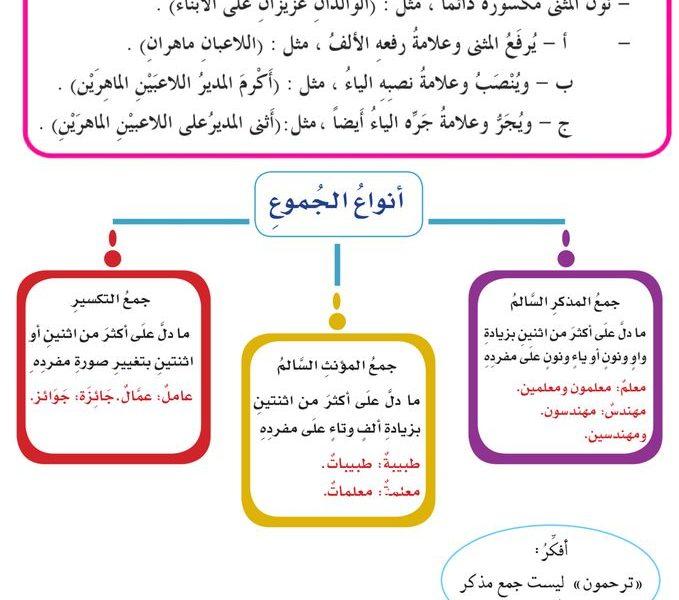 مراجعة في قواعد اللغة للسنة الخامسة ابتدائي