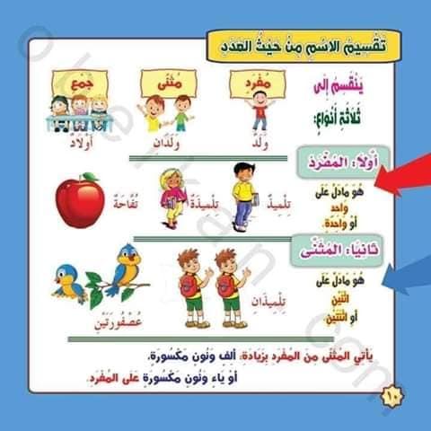 موسوعة النحو : تعليم أساسيات النحو