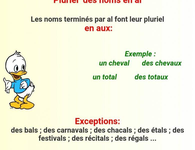 Pluriel des noms + exercices corrigés – ملخصات فرنسية