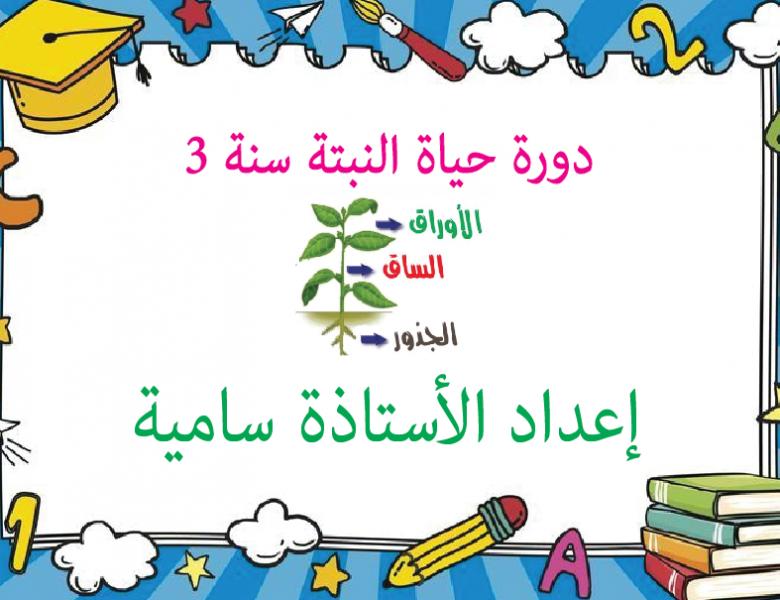 دورة حياة النبتة سنة 3 ـ إعداد الأستاذة سامية