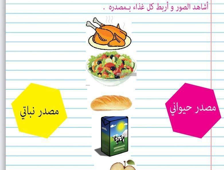الأغذية النباتية والأغذية الحيوانية ـ إعداد الأستاذة سامية